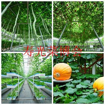第十六届中国(寿光)国际蔬菜科技博览会欢迎您