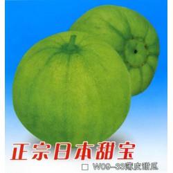 供应正宗日本甜宝-甜瓜种子
