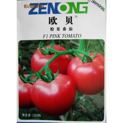供应欧贝----西红柿种子