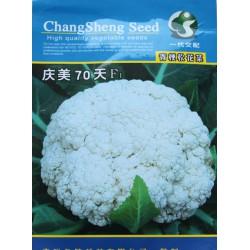 供应庆美70—花椰菜种子