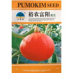 供应裕农富阳-南瓜种子