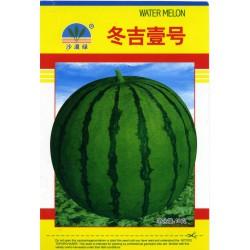 供应冬吉壹号—西瓜种子