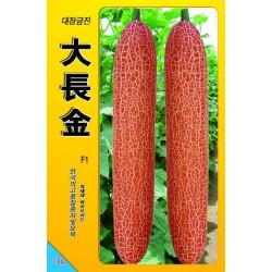 供应韩国大长金(老黄瓜)—黄瓜种子