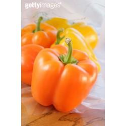 供应桔泰—甜椒种子
